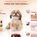 Акция  «Purina One» (Пурина Ван) «Моя собака»