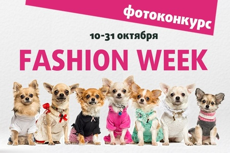 4 лапы- «fashion week»