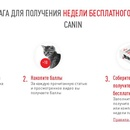 Акция  «Royal Canin» (Роял Канин) «Метод проб без ошибок»