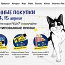 Новосибирск феликс акция корма для кошек thumbnail