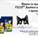 Акция  «Felix» (Феликс) «Кубок Феликса 2018»