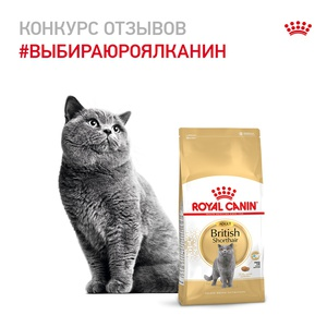 Конкурс Royal Canin: «Выбираю Royal Canin»