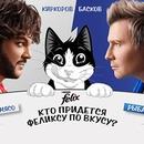 Конкурс  «Felix» (Феликс) «Кто придется Феликсу по вкусу?»