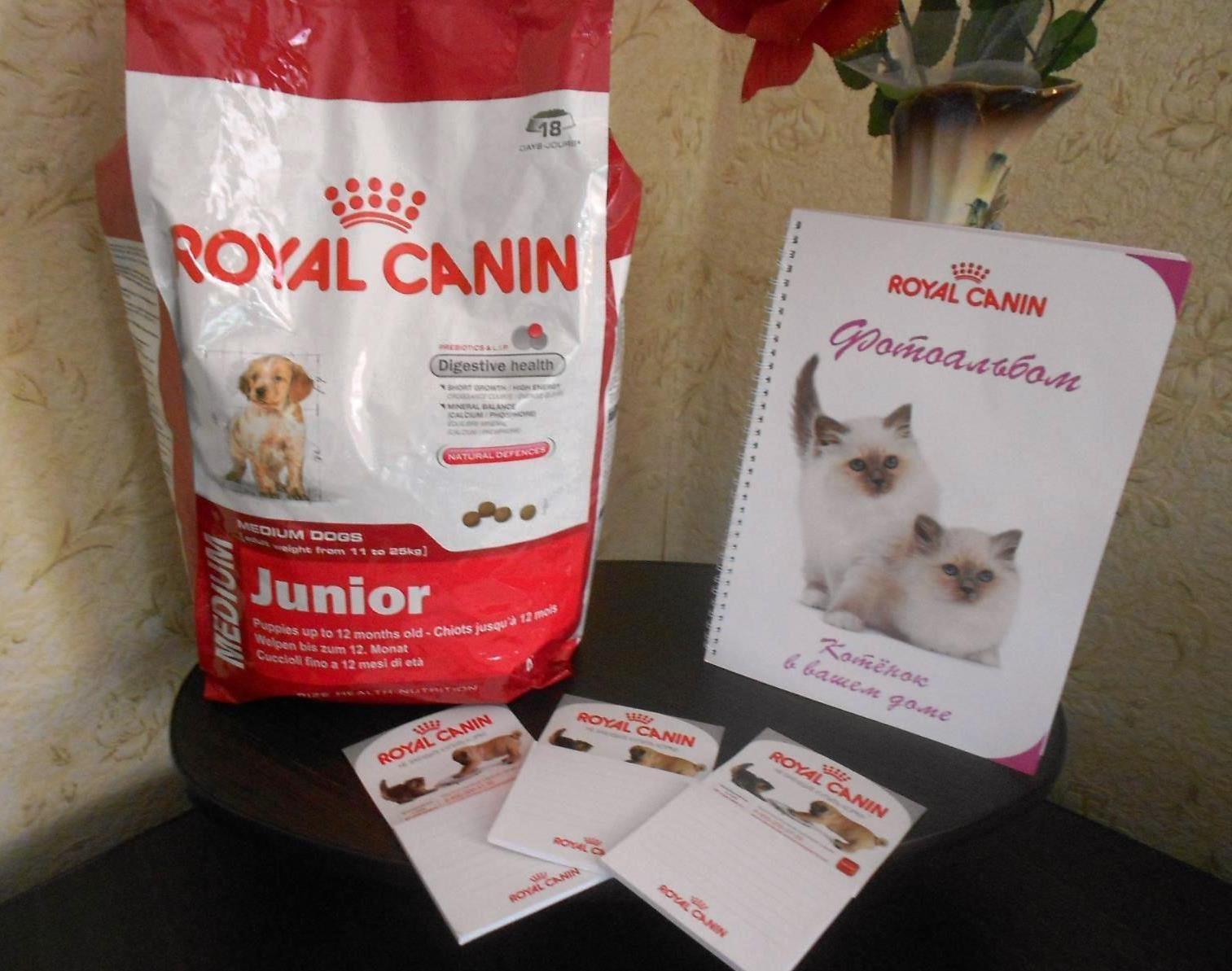 Корм royal canin армавир