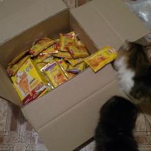 8 кг кошачьего счастья! от Friskies