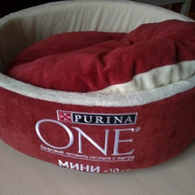 Крутой лежак от Purina One